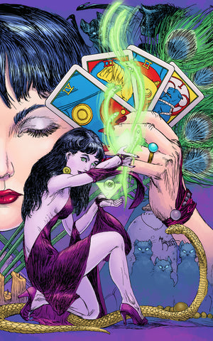 Madame Xanadu #14 (Mr) 2Nd Series DC 2009 Matt Wagner Michael Kaluta