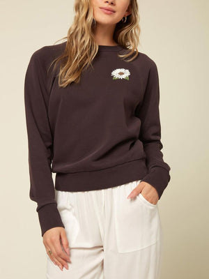 Mavericks Raglan Crew Sweatshirt