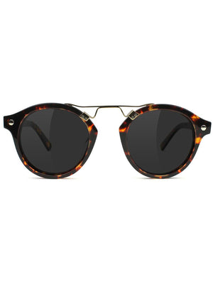 TORTOISE POLARIZED