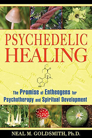 Psychedelic Healing: The Promise of Entheogens for Psychotherapy and Spiritual Development