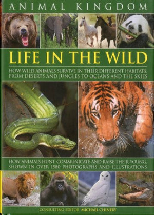 Animal Kingdom: Life in the Wild