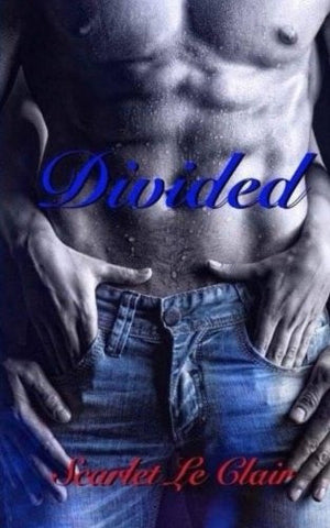 Divided (Torn) (Volume 3)