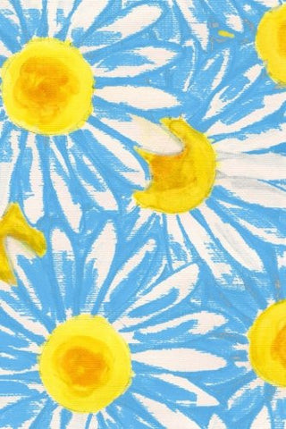 Password Journal: Daisies Blue: Keep All of Your Passwords Organized, 160 Pages (6 x 9 inches) (Password Manager)