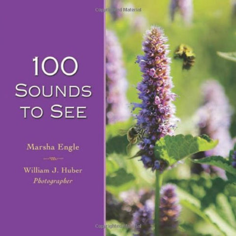 100 Sounds to See