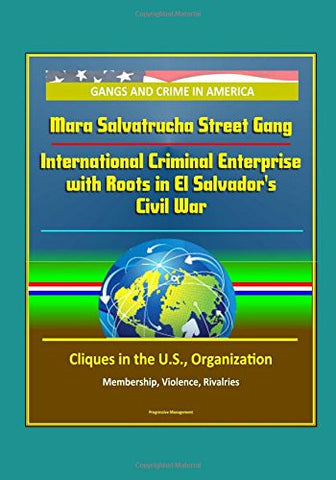 Gangs and Crime in America: Mara Salvatrucha Street Gang: International Criminal Enterprise with Roots in El Salvador's Civil War - Cliques in the