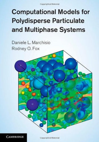Computational Models for Polydisperse Particulate and Multiphase Systems (Cambridge Series in Chemical Engineering)