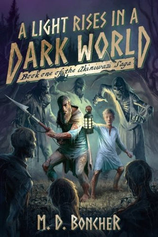 A Light Rises in a Dark World: Book One of the Akiniwazi Saga