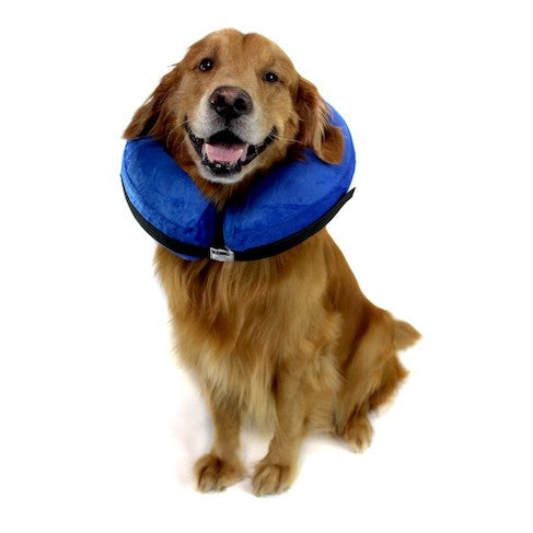 Kong Cloud - Pet Recovery Collar