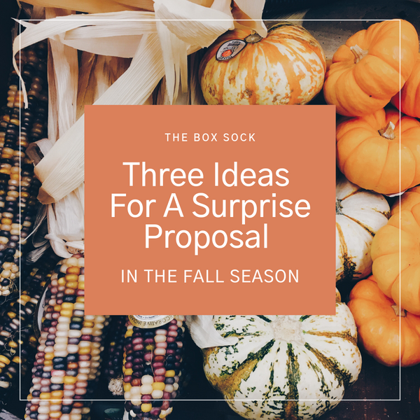Ideas for a surprise proposal in the Fall