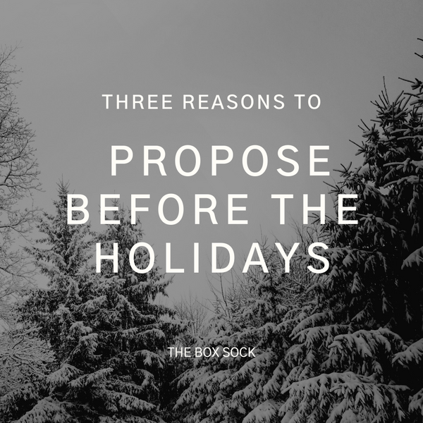 Surprise holiday proposal