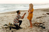 surprise beach theme proposal
