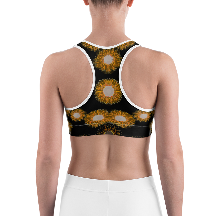 animus vici Sports bra
