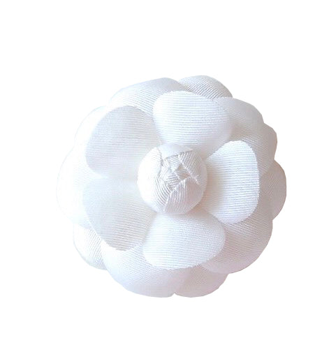 Camellia Flower in White