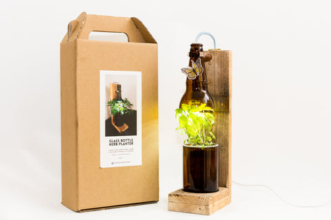 Bottle Planter from Recycled Materials