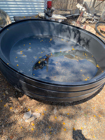 Poly tub insert pond