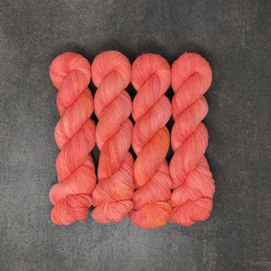 Spicy Salmon - Traveling Yarn