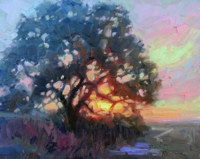 Sunlight Through the Oak Tree Matted Print