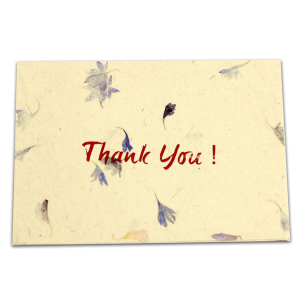 Monk Paper Thank You Note with Envelope Cornflower Petal Red Letter 10 Pack