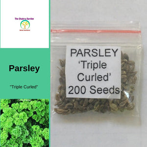 Parsley 'Triple Curled - Herbs-Vegetable Seeds - 200 seeds - Heart Chakra