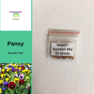 Pansy 'Bambini Mixed' Edible Flowers - 50 Seeds - Throat Chakra