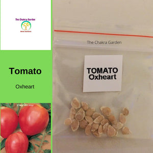 Tomato 'Oxheart'-Vegetable-25 Seeds-Base Chakra