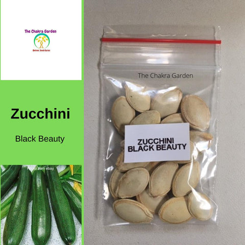 Zucchini 'Black Beauty' - 20 Seeds - Vegetables -Heart Chakra