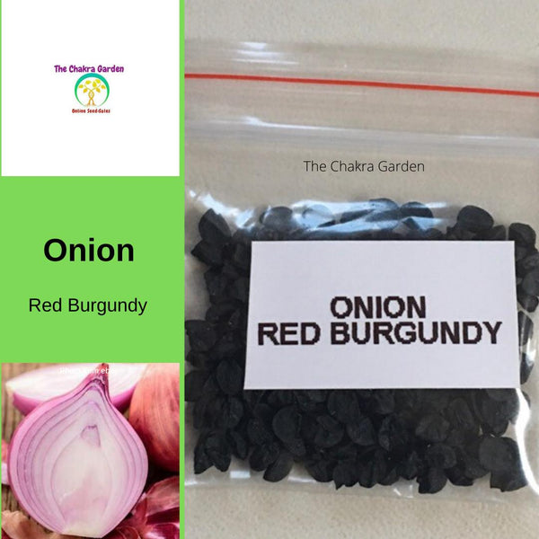 Onion 'Red Burgundy' - 200 Seeds - Vegetable Seeds - Crown Chakra