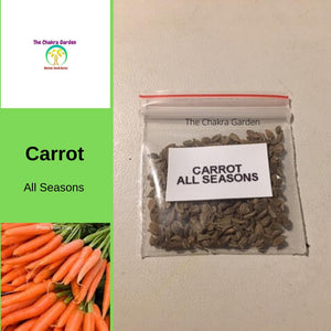 Carrot 'All Seasons' - 500 Seeds - Vegetables - Sacral Chakra