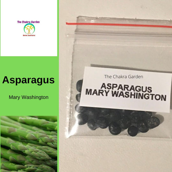 Asparagus 'Mary Washington' - 25 Seeds - Vegetable Seeds - Heart Chakra