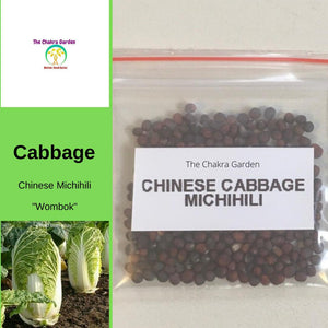 Cabbage 'Chinese Michihili' (Wombok) - Vegetable - 200 Seeds - Heart Chakra