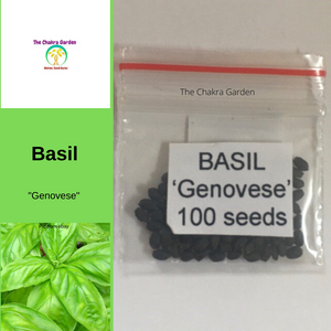 Basil 'Genovese' (Italian Long Leaf)-Vegetable-100 Seeds-Ajna Chakra