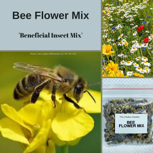 Bee Flower Mix-FLOWER-2g seeds