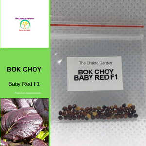 Bok Choy 'Baby Red' F1-200 seeds-Vegetables-Base Chakra