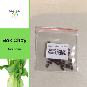 Bok Choy 'Mini Green'-50 seeds-Vegetable-Heart Chakra