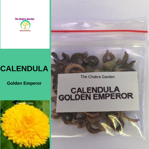 Calendula 'Golden Emperor'-50 seeds-EDIBLE FLOWERS-Sacral Chakra