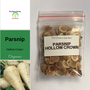 Parsnip 'Hollow Crown' - Vegetables - 100 Seeds - Solar Plexus Chakra