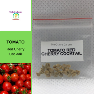 Tomato 'Red Cherry Cocktail'-Vegetable-25 seeds-Base Chakra