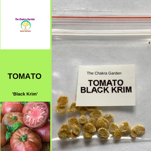 Tomato 'Black Krim'-EDIBLES-25 seeds-Base Chakra
