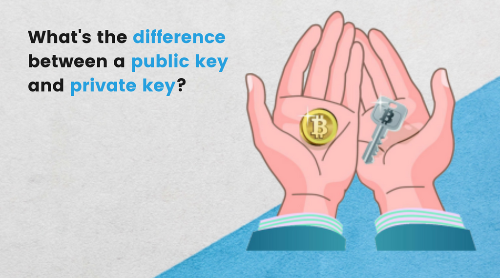 What's the difference between a public and private key.