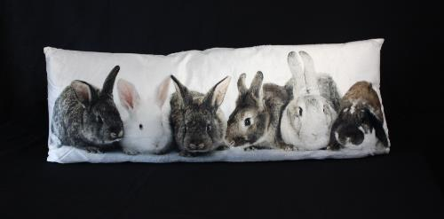 Bunnies Print Cushion