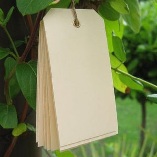 10 Buttermilk Eyelet Tags (small)
