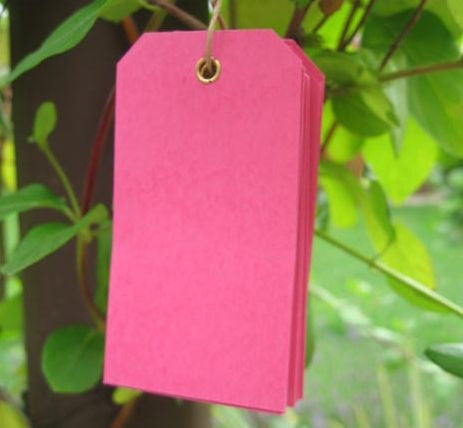 10 Raspberry Eyelet Tags (small)