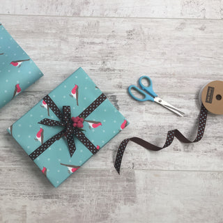 Chocolate and Turquoise Dotty Ribbon