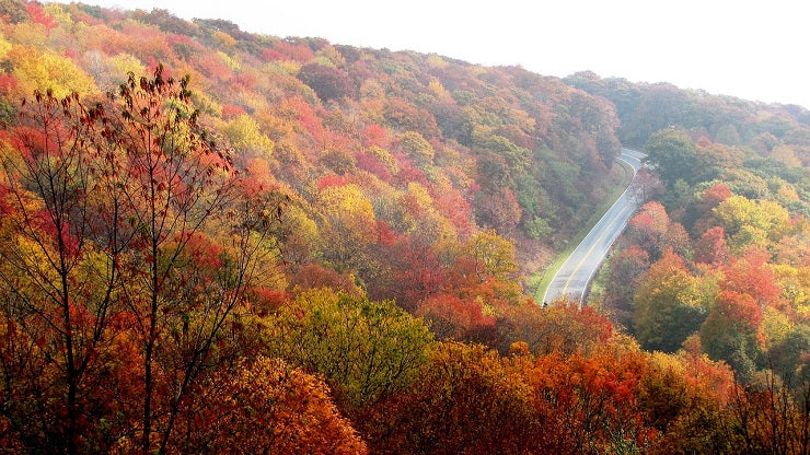 6 Reason You Should Travel the USA in the Fall
