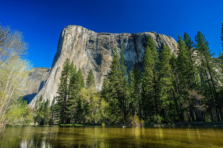 Yosemite Merced River Float Tubing USA Destinations