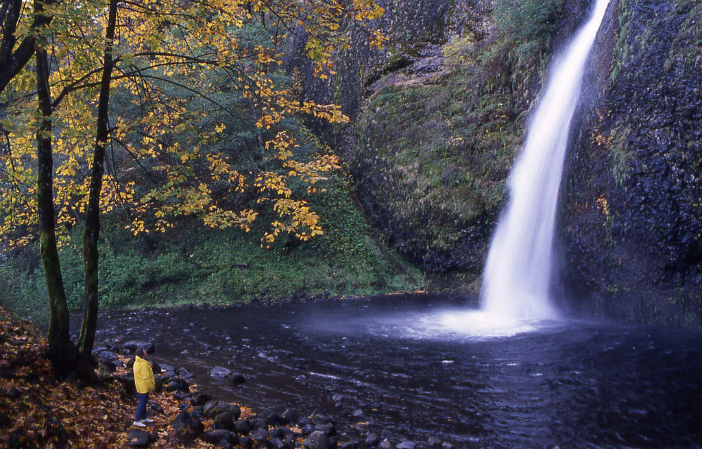 Columbia River Gorge, Oregon, autumn fall usa travel color