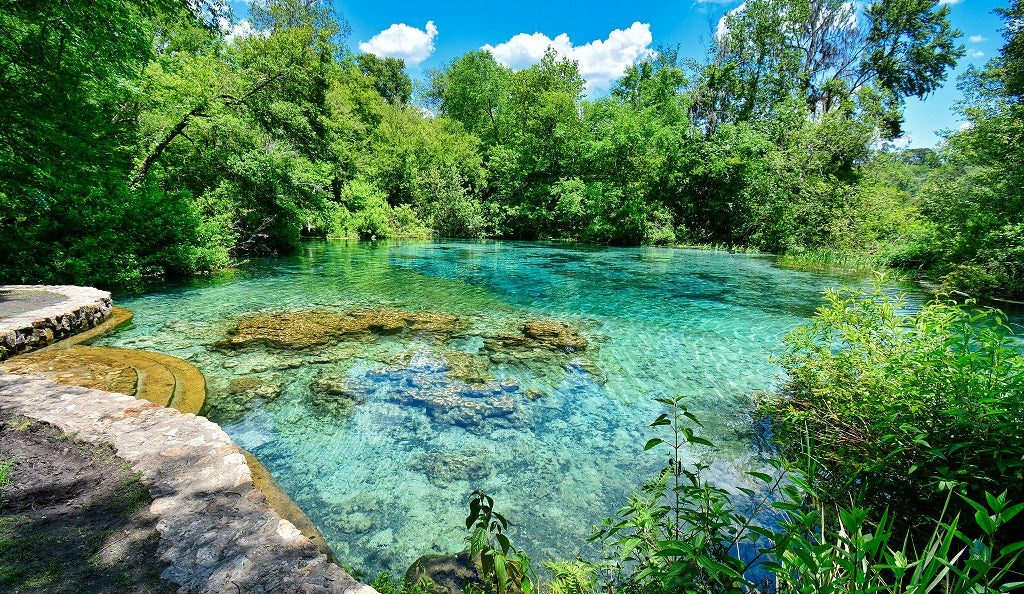 Ichetucknee Springs State Park River Float USA Summer