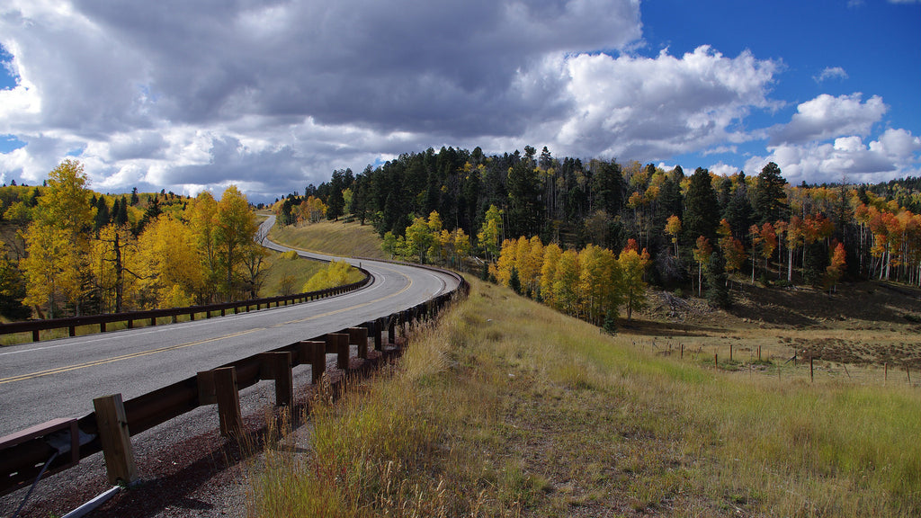 The Enchanted Circle Byway, New Mexico, fall, taos, colors, leaves