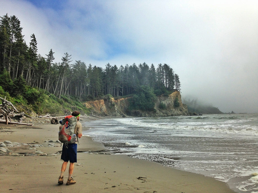 Olympic Peninsula Road Trip America