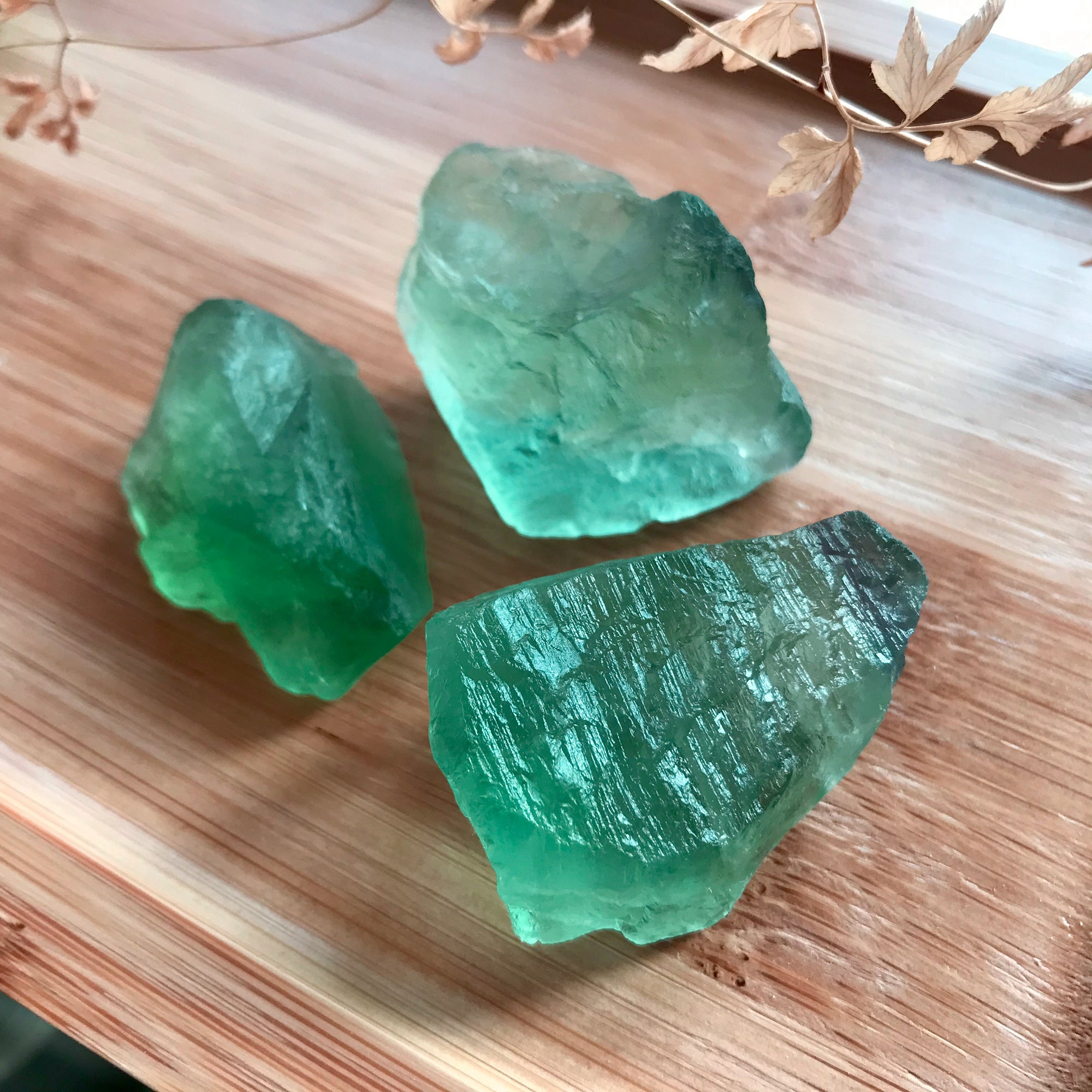 Set of 3 - Genuine Raw Glowing Green Flourite Crystals | Anahata Heart Chakra Activation | Cleanse, Purify, and Heal Past Heartbreaks